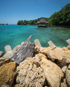 Tropical Scenes II