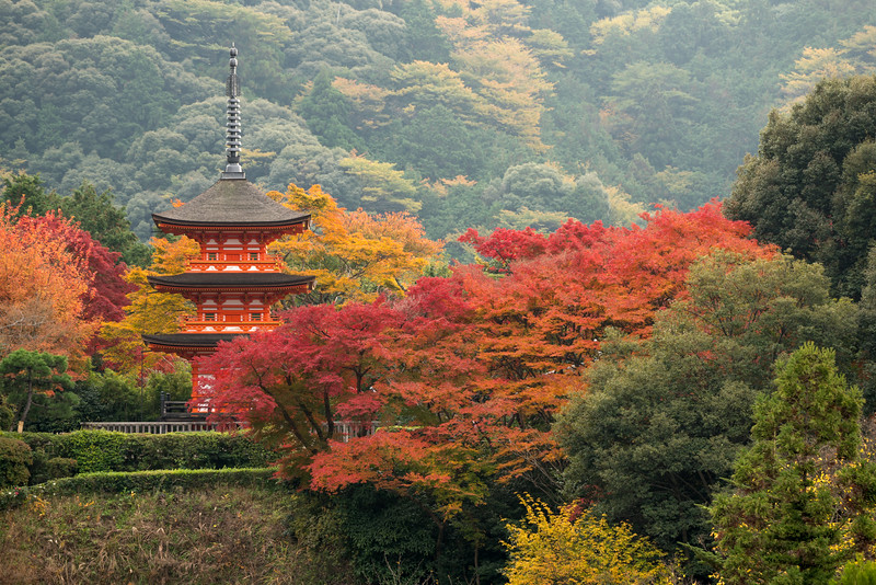 Pagoda in Autumn