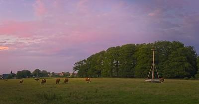Cows at the Krochstuk