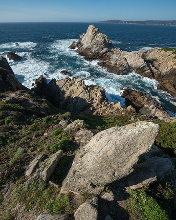Ocean Views at Point Lobos II