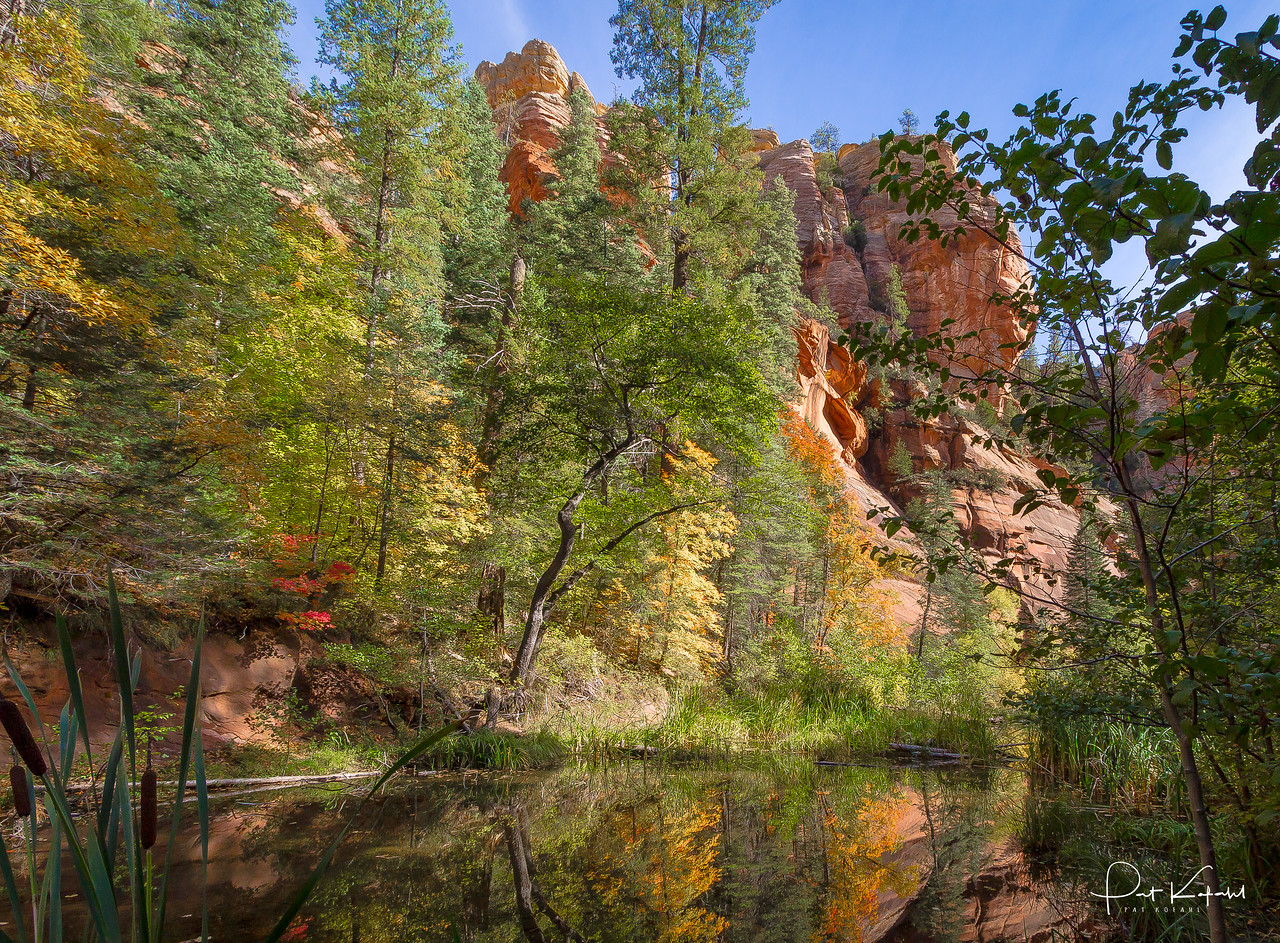West Fork Reflections