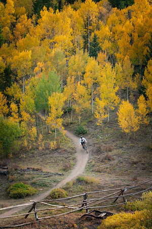A mountain biker exits the aspen forest on the Aspen Alley trail, Breckenridge, CO.
