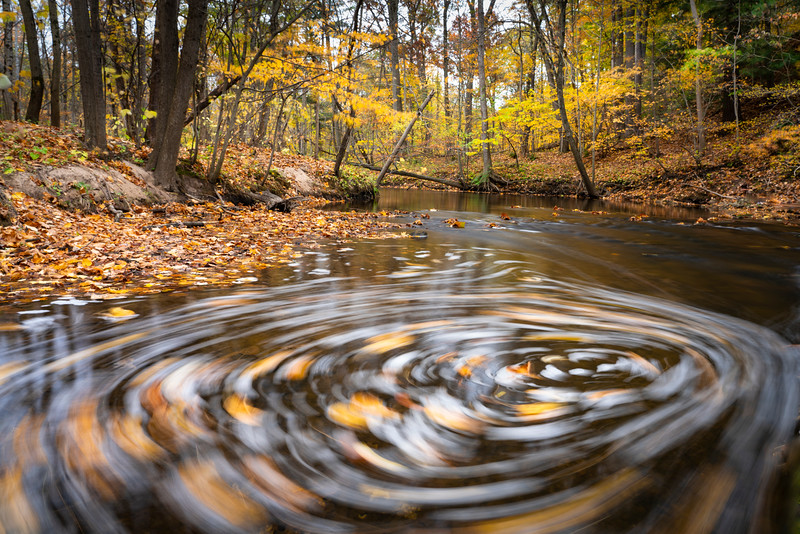 Leaves spin in an eddy in Sand Creek at Aman Park in Grand Rapids, MI .