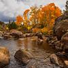 Carson River Fall Colors