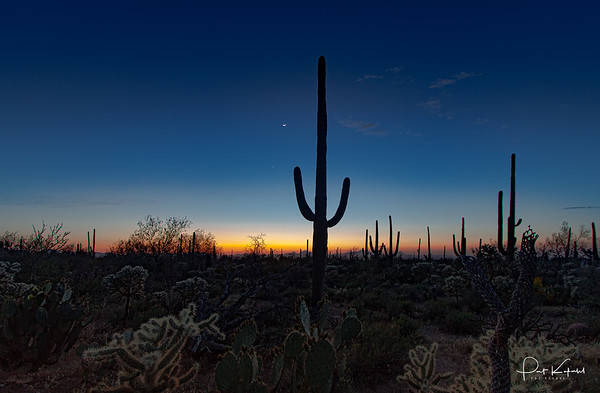 Silent Sonoran Sunset