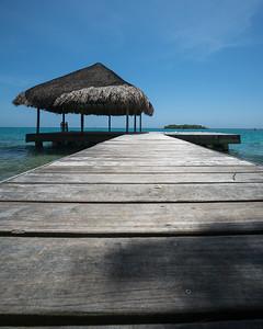 Tropical Scenes III