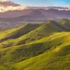 Kalaheo Hillside