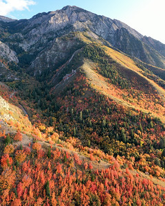 Blankets of Autumn on Mount Olympus