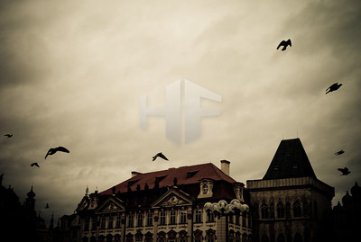 heninger.org-14