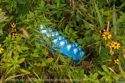 015-litter_plastic-wdsm-29aug20-12x08-008-400-7639