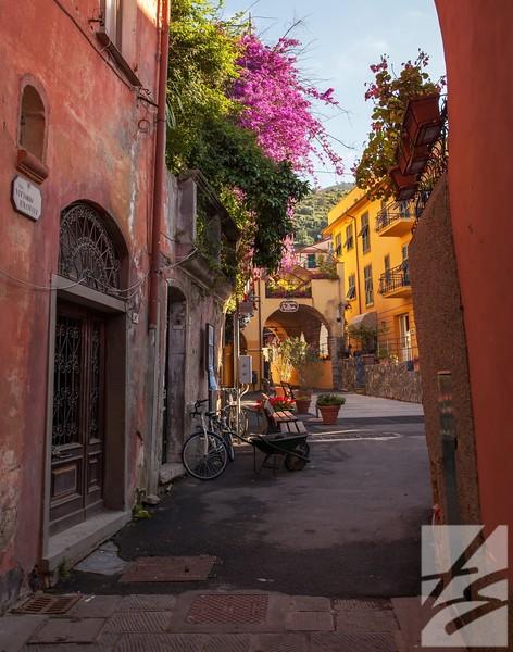 "(54)  - Street scene w/ flowers - Monterosso al Mare, Italy - 24"" x 30"" metal print (was $325) now = $165"