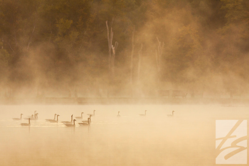 "(15)  - Foggy Morning #2 - Virginia Kendall Lake - Peninsula, Ohio - 20"" x 30""  canvas wrap (was $265 (now $125)"