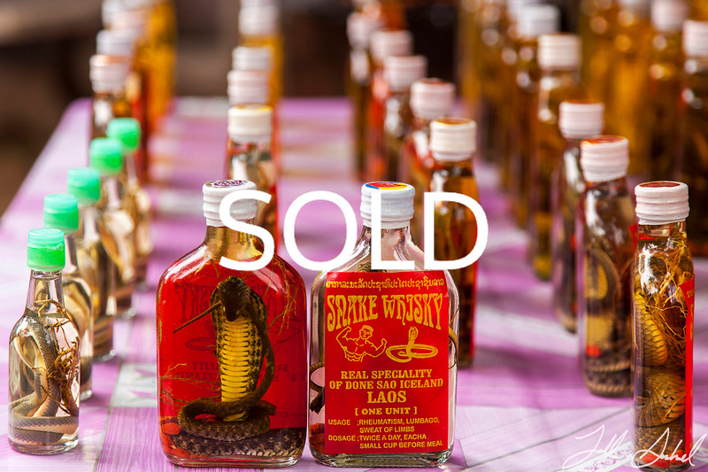 "**SOLD** (5) - Snake Whiskey - Laos - 11"" x 17""  metal print (was $110) now = $50"
