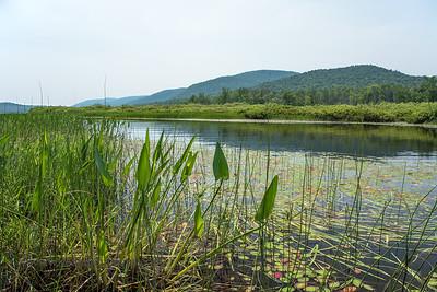 Lewey Lake, NY