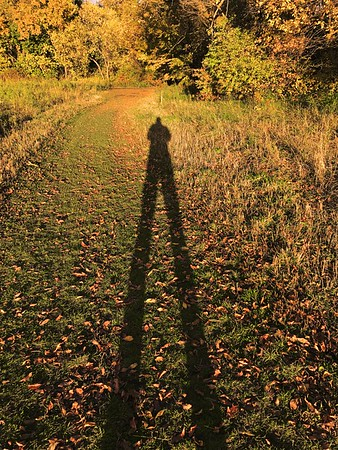 long october shadow