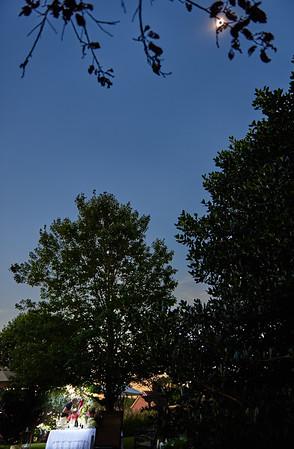back yard eclipse
