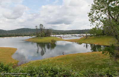 Water fills, touching green grass at Bidwell Canyon Marina Monday April 11, 2016 in Oroville, Calif.  (Emily Bertolino -- Enterprise-Record)