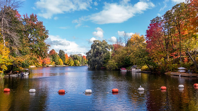 Staying close to home...  Manotick