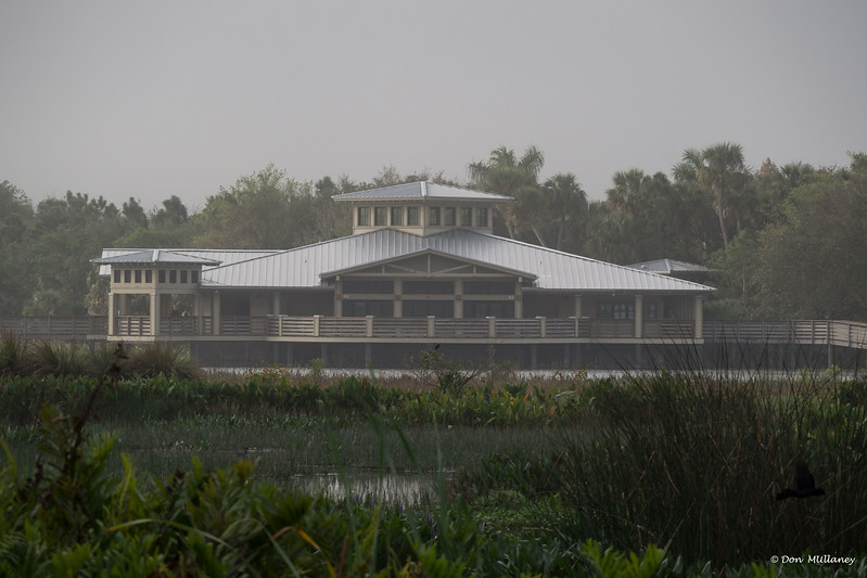 A foggy morning at Green Cay Wetlands, Boynton Beach, FL    2/24/17