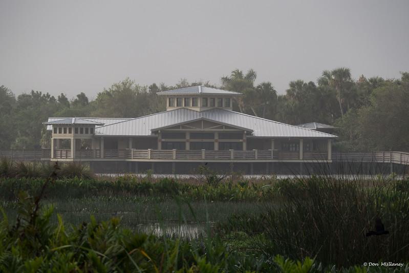 A foggy morning at Green Cay Wetlands, Boynton Beach, FL    2/24/17