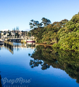 Reflections on Mitford Creek