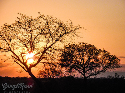 End of a Sabi Sands day