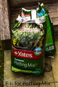 P is for Potting Mix