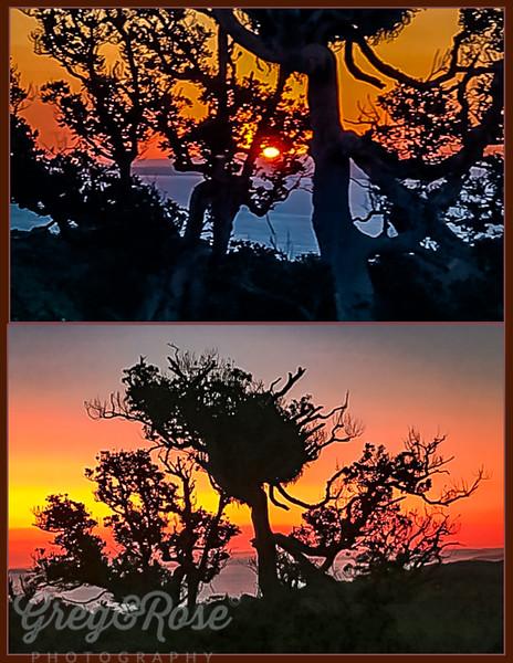 Sunset on Waikeke Island