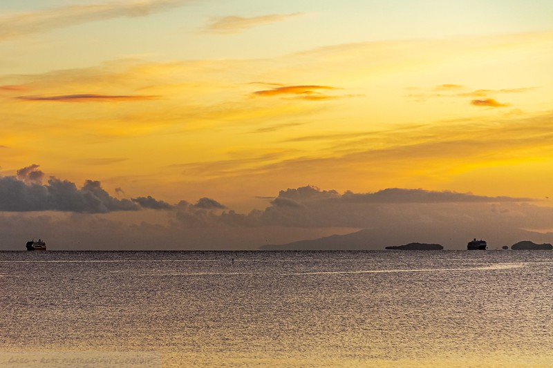 Cruise Ships Moored  in the Hauraki Gulf