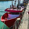 Fishing Trawlers tied up at Napier Wharf are all for sub-staining fishing stocks