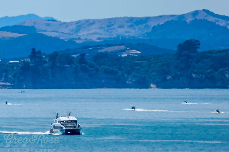 Ferry coming back from Waiheke Island