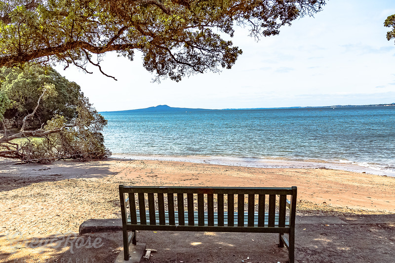 A place to sit and ponder the view