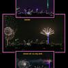 Auckland's Sky Tower Midnight 2020