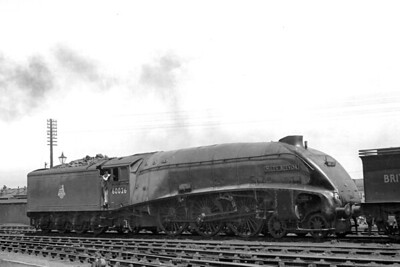 Gresley A4 pacific no. 60026 Miles Bevor in BR blue livery at its home shed, Grantham, on 4/6/50. The blue livery dated from 23/9/49 and would be superseded by BR's green livery from 24/10/52. 60026 had started its career as a Scottish based A4 at Haymarket depot in 1937 and would end its career back in Scotland allocated to Aberdeen (Ferryhill) where it would be withdrawn on 21/12/65. The tender that's just visible on the right belongs to Ivatt C1 class atlantic no. 62822. [Mike Morant collection]