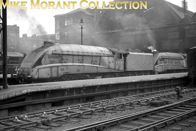 Garter blue liveried LNER Gresley A4 pacifics nos. 2510 Quicksilver and 4902 Seagull at King's Cross station on an unspecified date in 1938. [J. H. Venn / Mike Morant collection]