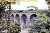 Ivatt 'Flying Pig' 4MT mogul no. 43009 in charge of a Clapham - Tebay freight crosses Ingleton viaduct on 31/7/63<br> [<i>Mike Morant collection</i>]
