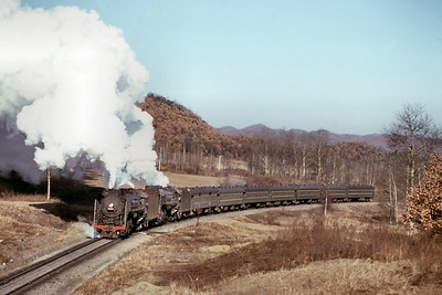 Chinese State Railway QJ class 2-10-2's no. 283 & 2860 double-head a passenger train at Nancha on 8/11/90. [Mike Morant collection]