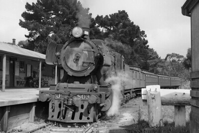 Australian Steam Victorian Government Railways 'J' class 2-8-0 pauses with the Down daily passenger service at Stony Point station on 19/3/59. [Mike Morant collection]