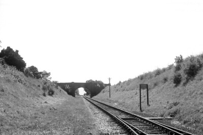 A view looking southwards from Lavant station, the first station north of Chichester on the line to Midhurst, taken from the trackside on 17/7/58. Lavant had opened in 1881 but closed to passenger traffic on July 8th, 1935. However, goods operations continued until 1968 but one railtour brought passengers to this station, The Hayling Farewell tour on 3/11/63.  [H. C. Casserley / Mike Morant collection]