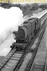 """Bulleid Q1 Class 0-6-0 no. 33020 steams southwards as a light engine towards Guiildford at Worplesdon station on 25/4/65. A sentimental soul has highlighted the smoke box number plate to read """"C20"""" and has repeated it in chalk on the smokebox door. [Mike Morant]"""