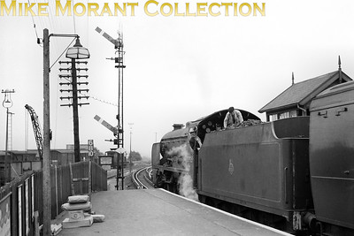 Maunsell 'Schools' class 4-4-0 no. 30925 Cheltenham awaits the guard's signal to depart from Eltham Well Hall station circa 1957. 30925 was a Bricklayers Arms engine at the time and would be withdrawn as part of The Great Cull at Basingstoke mpd in December 1962 but had already been earmarked to become a part of the National Collection and is still with us today. [Mike Morant collection]