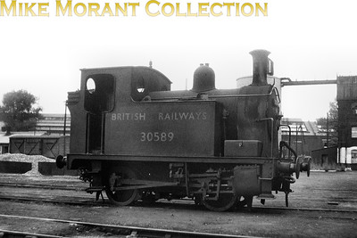 Drummond C14 class 0-4-0T no. 30589 in early BR livery, which had been applied as early as May 1948, is depicted at Southampton docks. [Mike Morant collection]