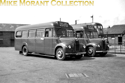 London Transport GS19 and GS12 at Hertford bus station in the summer of 1955. [Photo taken by Mike Morant