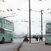 Teesside Municipal Transport trolleybus<br> Fleet no.: 285 & 286<br> Registration: GAJ 15 & GAJ 16<br> Chassis: Sunbeam<br> Body: East Lancashire<br> Entered service: 1950<br> Withdrawn: 4/71<br> [<i>Mike Morant collection</i>]