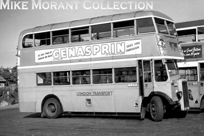 An undated profile shot of London Transport Daimler CWA6D with Park Royal body, no. D279, registration HGF 956, displaying the route indicator for 80, Tooting. The location isn't stated but is probably Sutton bus garage. [Mike Morant collection]