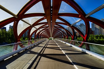 Peace Bridge and Shadows