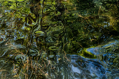 Wavy Reflections