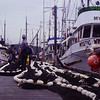P:rince Rupert government dock 1981