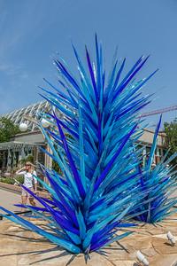 20140719-111527-Botanical-Gardens