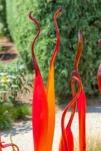 20140719-110205-Botanical-Gardens